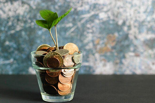 Een plant die groeit uit een spaarvarken.